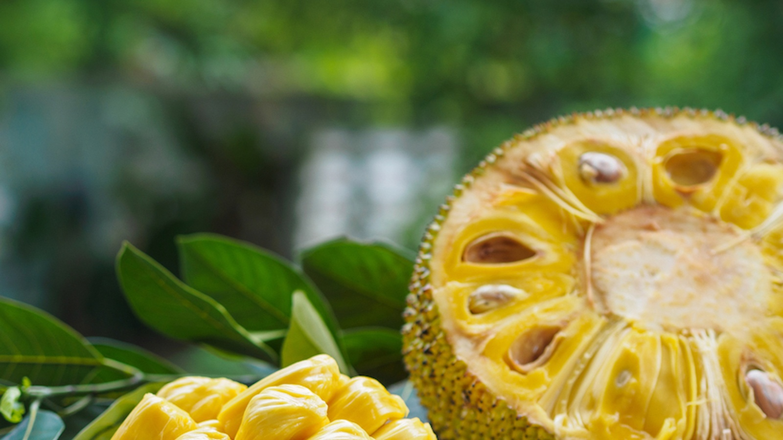 "What is Jackfruit? Everything You Need to Know About This Popular Plant-Based ""Meat"""