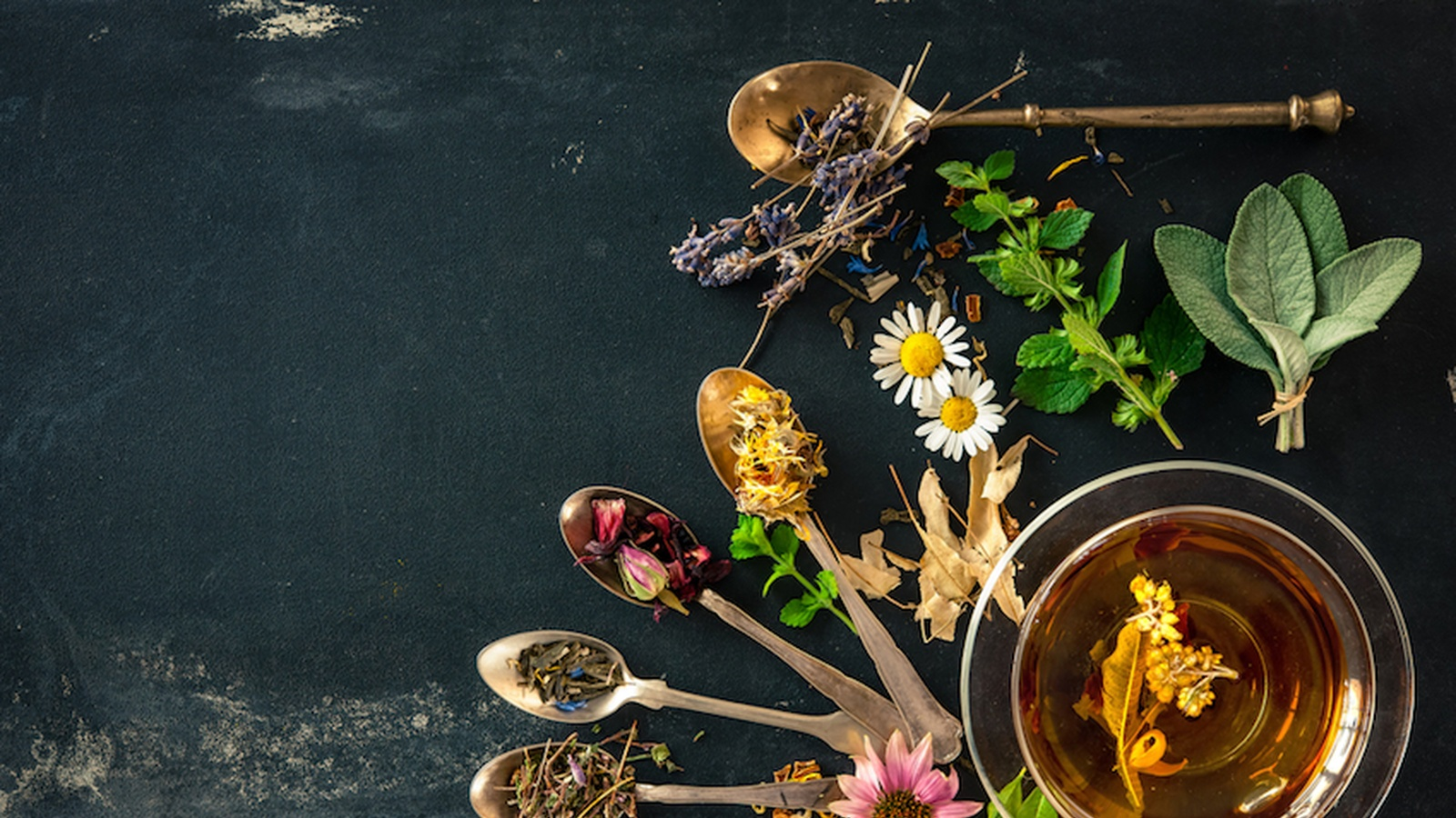 10 Ancient Medicinal Herbal Remedies That Actually Work