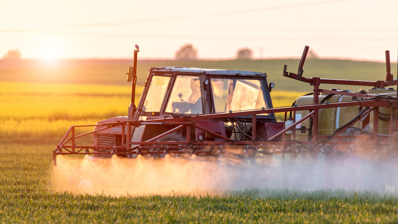 What Is 'Roundup' Doing To Your Body?