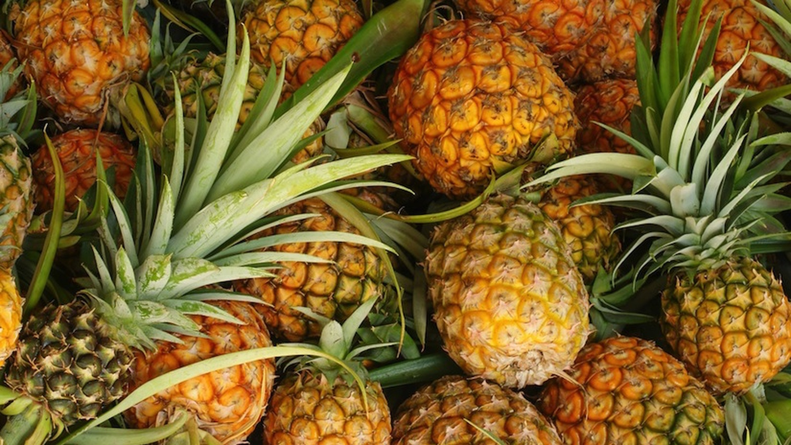 16 Powerful Reasons to Eat Pineapple