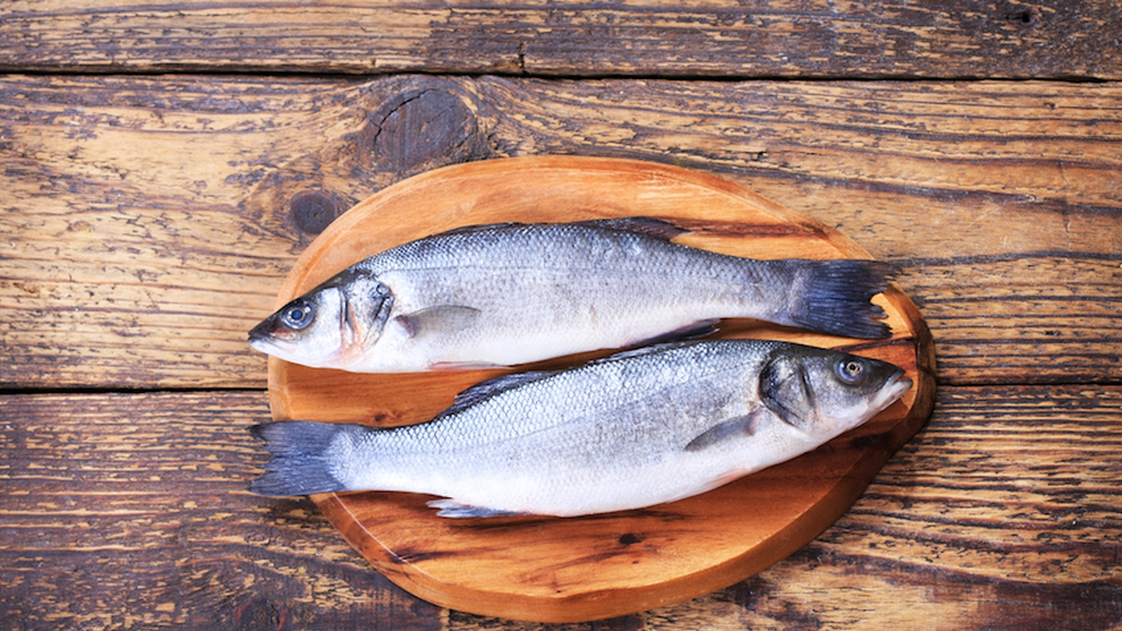 The Most Toxic Fish That You Should Avoid Food Matters