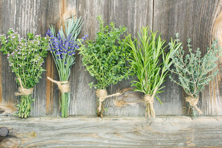 5 Herbs To Calm Anxiety (Without Being Drowsy)