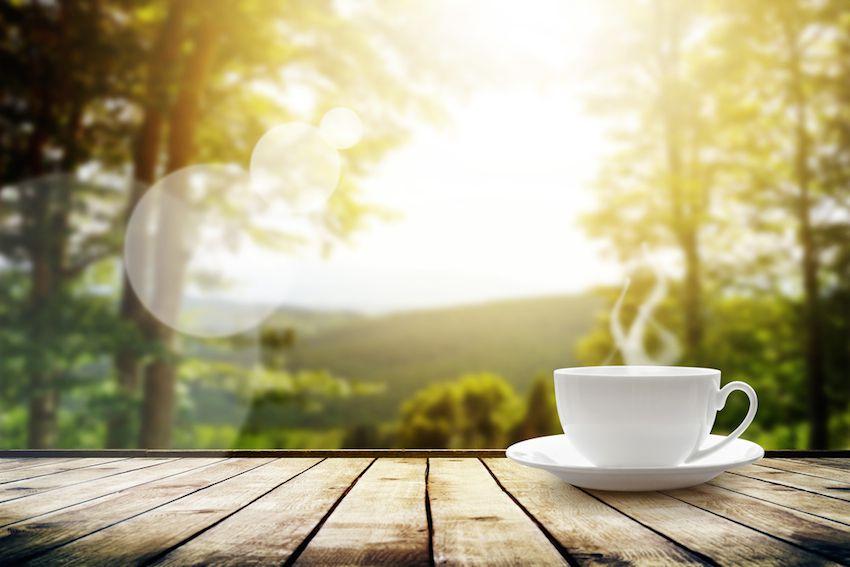 5 Reasons To Drink Herbal Tea