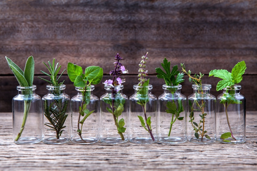 9 Essential Oils You Need In Your Life!