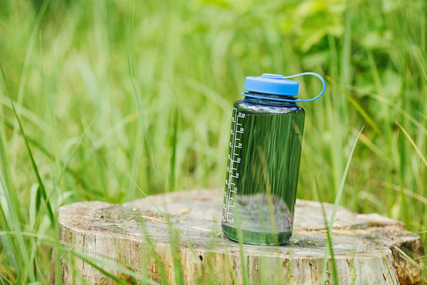 Is BPA-Free Really Any Healthier?