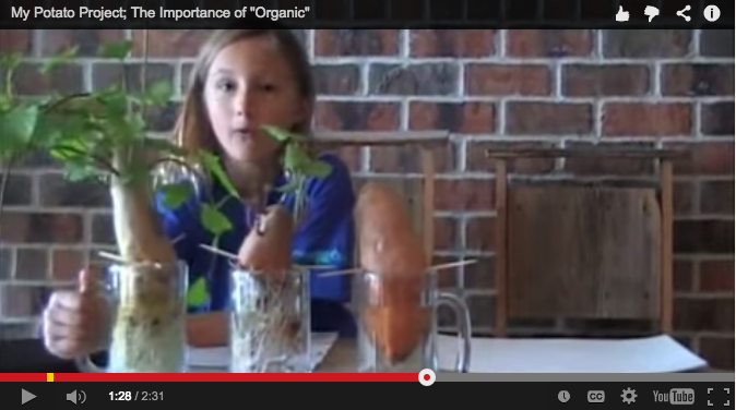 My Potato Project: Why Is Organic So Important? (Video)