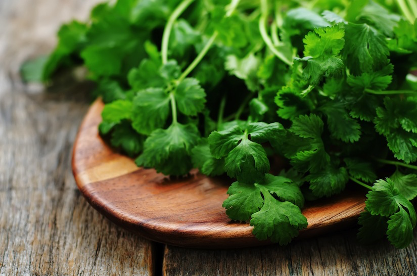 Top 5 Health Benefits Of Cooking With Cilantro