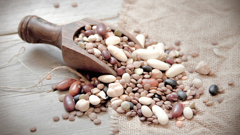 Top 6 Plant Based Proteins