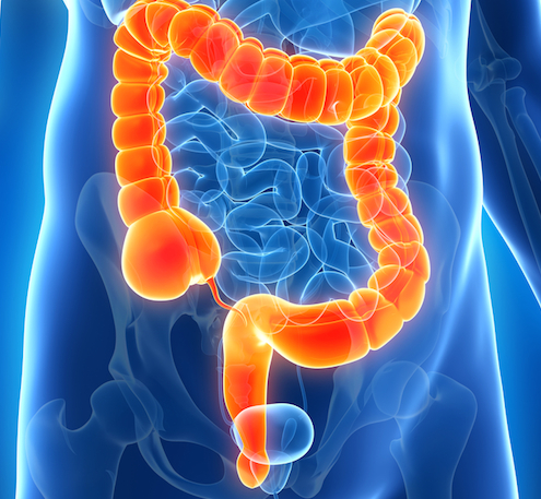 Colon Hydrotherapy - The Therapy that Even Doctors are Recommending