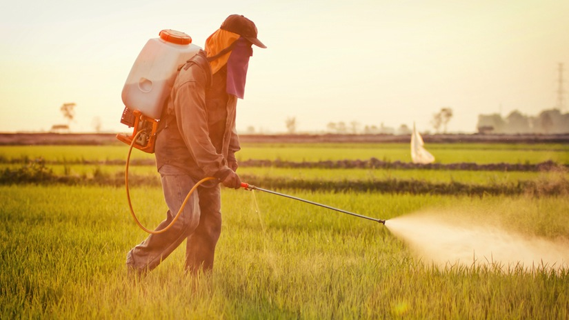 New Harvard Research Shows Link Between ADHD and Pesticides
