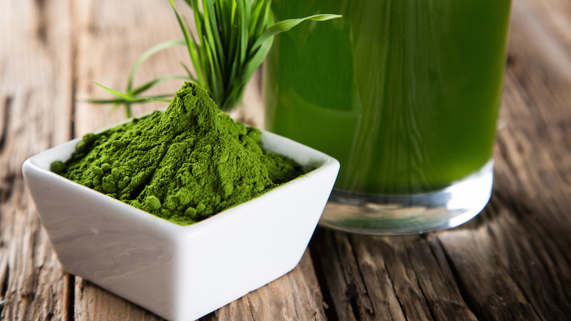 Therapeutic Uses of Spirulina for Treating Radiation Poisoning