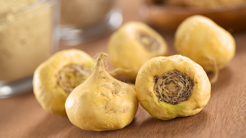 Maca Root Effective For Menopause
