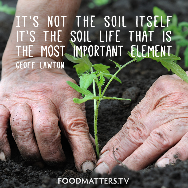 Soil health quotes quotesgram for Soil our life