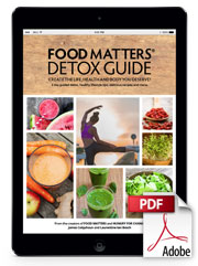 E book download food matters e book download food matters forumfinder Image collections