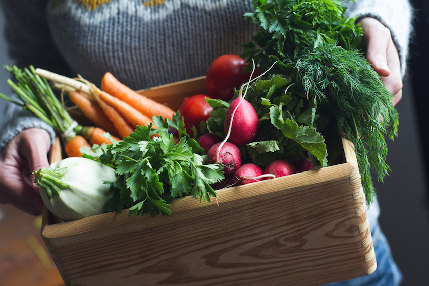 Join The Food Waste Revolution