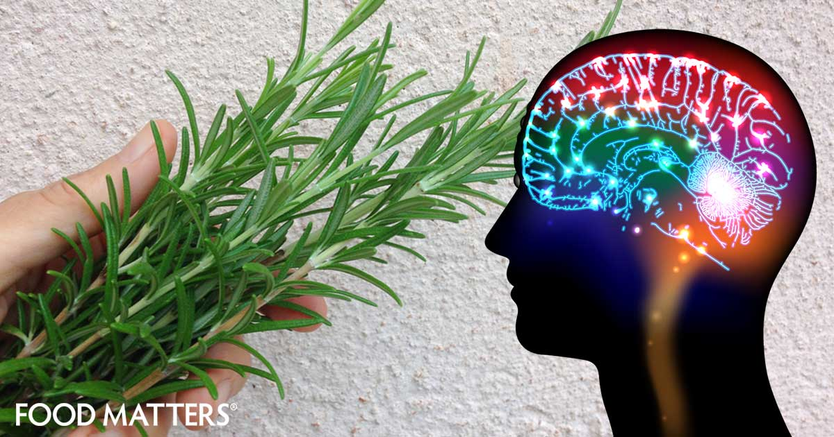 11 Herbs That Will Help Make Your Memory, Focus And Brain
