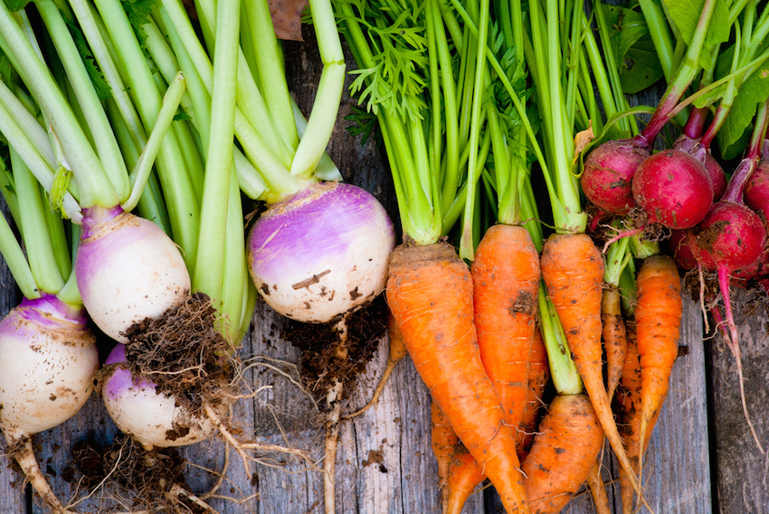 8 Ways To Grow Your Own Food From Scraps!