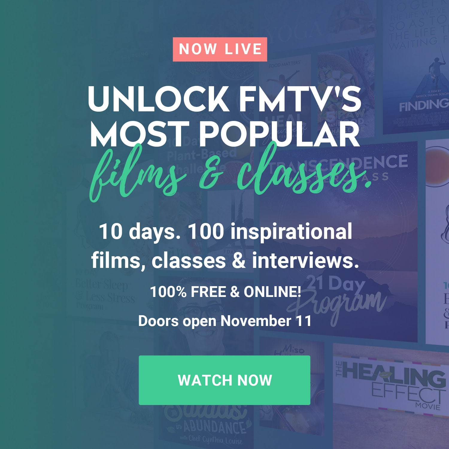 Try FMTV for FREE